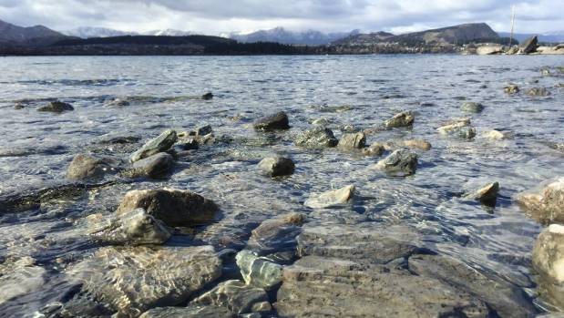 Wanaka's community harbours deep concerns about lake water quality following years of complaints about filter-clogging ...