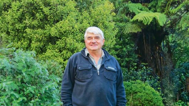 """""""The plants that heal the land are also the ones that heal the people on the land,"""" says Rob McGowan, author of Rongoa ..."""
