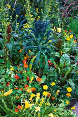 8. Add flowers: A tried and true method of dressing up vegetable gardens is, of course, to plant flowers amongst the ...