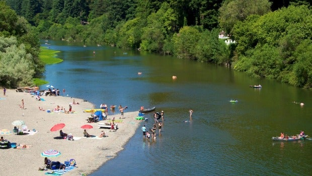 Guerneville's beach on the Russian River.