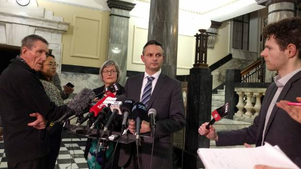 Greens co-leader James Shaw says he is dismayed at how Kennedy Graham and David Clendon went about announcing their ...