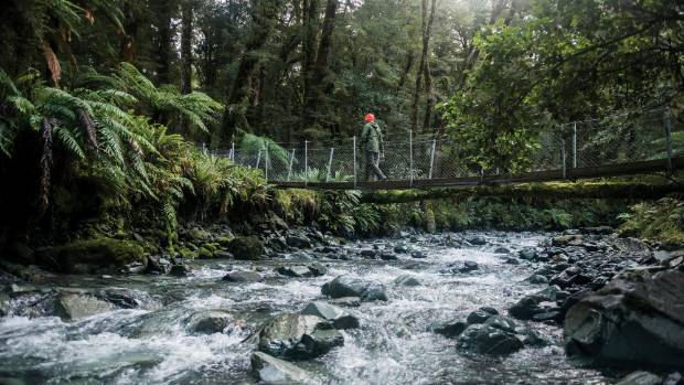 The Hollyford Track boasts some of the most stunning scenery in the country.