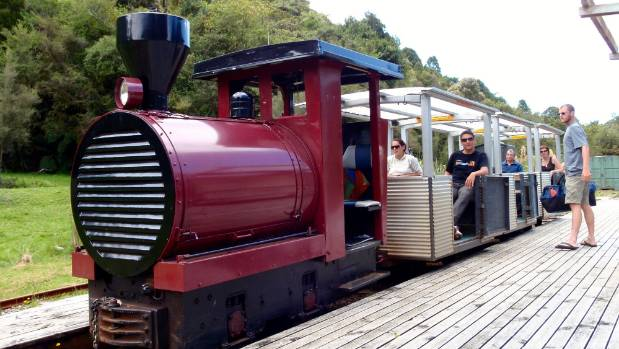Dorothy the train will take you through the Kahikatea forest.