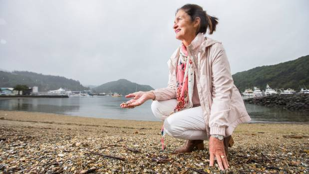 Picton Smart and Connected deputy chairwoman Jill Evans on the beach at the Picton foreshore.