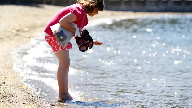 Looking for sea shells at the water's edge on Picton Foreshore. (File photo)