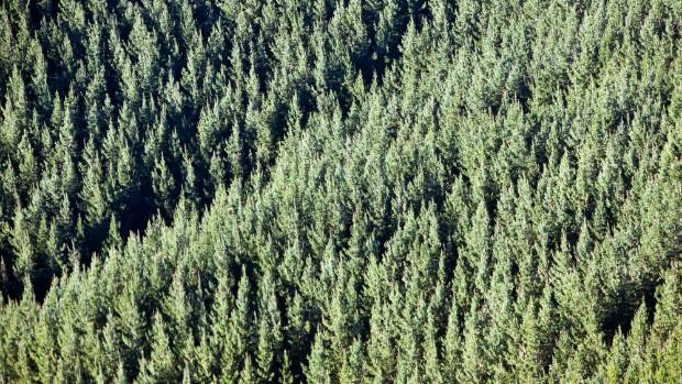 New national environmental standards are expected to increase costs for farm foresters.