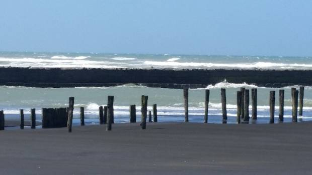 Seabed mining off the coast of Patea may drive away the blue whales.