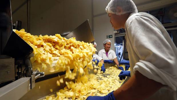 Staff at Proper Crisps check the production line at the Nelson factory.