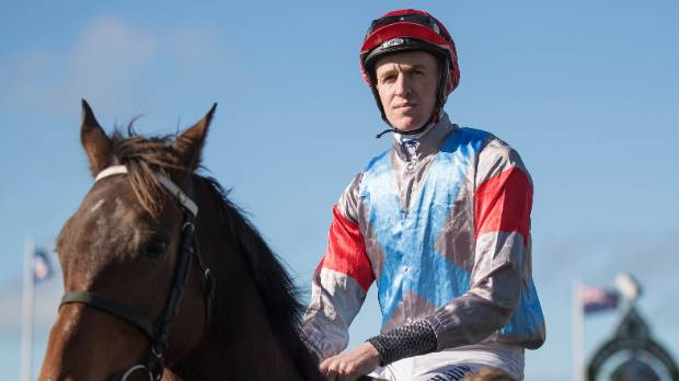 Shaun Phelan and Upper Cut will be one of the leading chances in the Grand National Steeplechase at Riccarton.