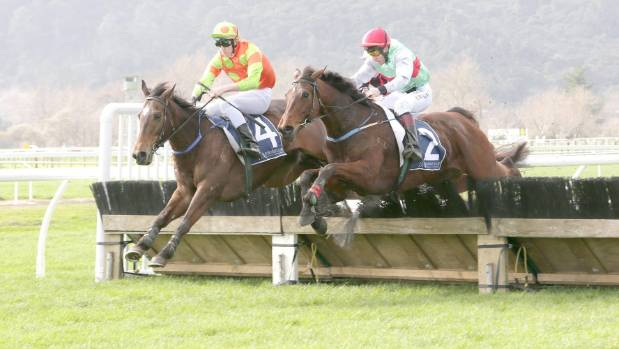El Corby staked his claim for the Great Northern Hurdles with an impressive win at Te Aroha.