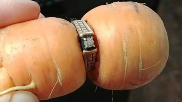Woman finds lost diamond engagement ring on carrot 13 years later