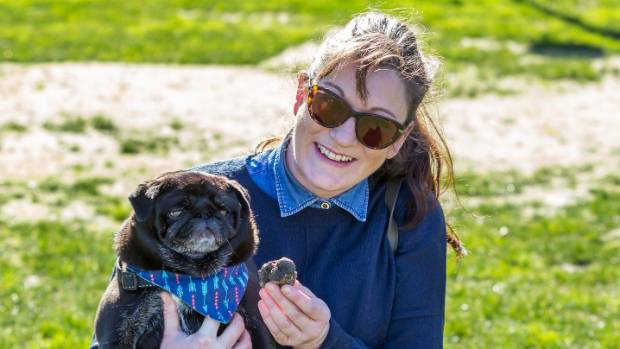 Kristy Miller's black pug Dot was the winner on the day, finding the hidden 40g black truffle, valued at $140.