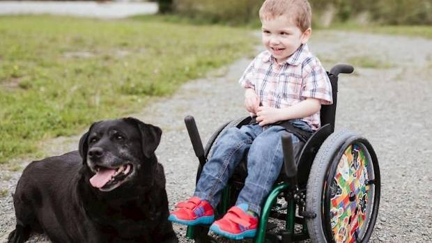 An pioneering spinal surgery overseas could help give Hugo a better chance of living a more normal life.