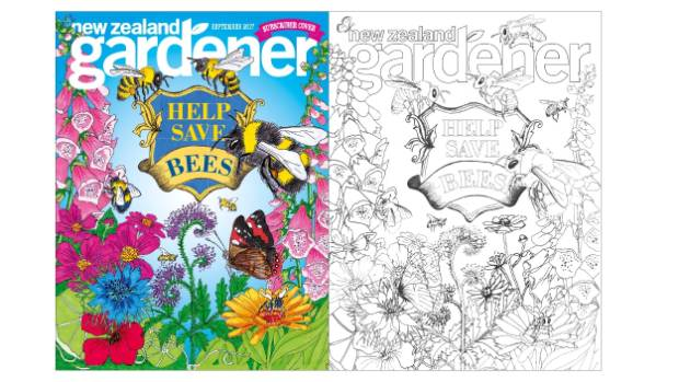 Colour in our gorgeous September cover.