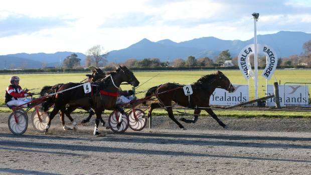 Waterlea Racecourse, in Blenheim, is still on the table for the co-location of the colleges. (File photo)