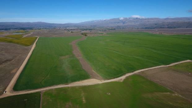 Big block of Central Otago land up for sale