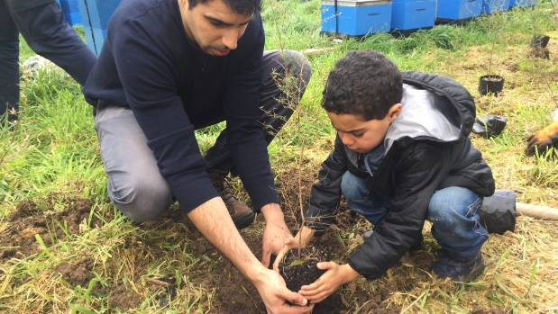 Eco-volunteering resurgence boosts coastal planting project