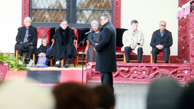 Mana Party leader Hone Harawira spoke to the crowd.