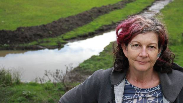 Annie Spurdle is concerned about the impact of earthworks in a wetland on Sea View Rd.
