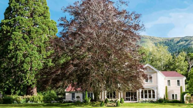 This majestic beech in front of the house is one of three well-positioned through the gardens. There are also three huge ...