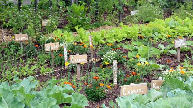 Great With A Bit Of Time And Effort, Even The Smallest Gardens Can Produce A Big