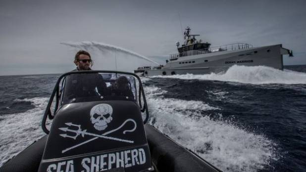 Activist group to end yearly face-off with Japanese whalers in Antarctic waters