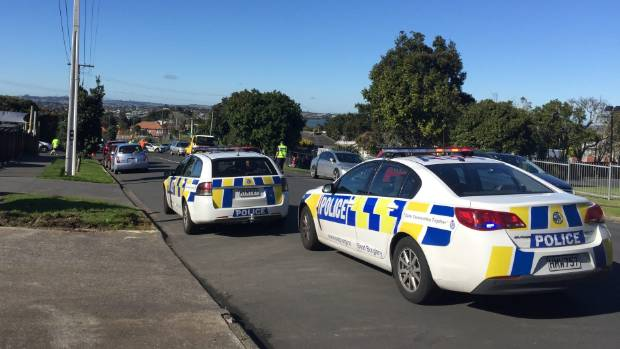 Image result for Child critically injured after being hit by car in west Auckland