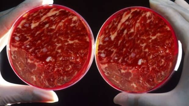 """Meat grown in a factory from animal tissue could become a popular """"cut"""" of the future - because it will be so cheap."""