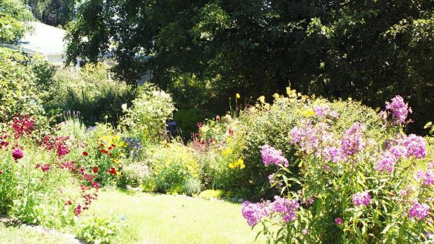Ruby McGhee's Kimbolton garden is full of colourful perennials.