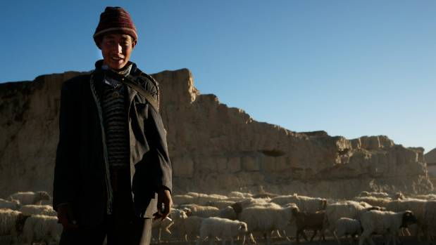 I met this shepherd while taking images of the landscape at sunset outside the town of Shigatse. Without common ...