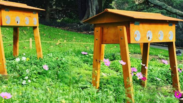 In March 2017, For The Love Of Bees and various collaborators installed six new hives into Auckland parks.
