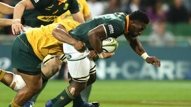 Springboks and Wallabies kiss their sisters in Perth scrap