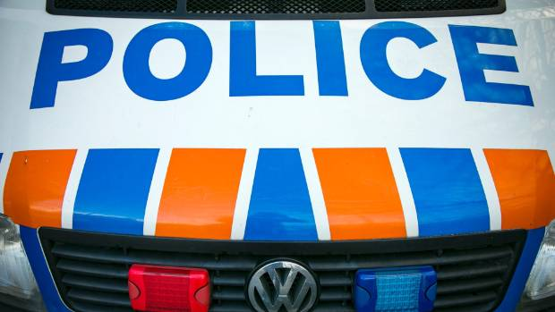 A stolen truck was found parked around the corner in an early morning head-scratcher for Dunedin police. (File photo)