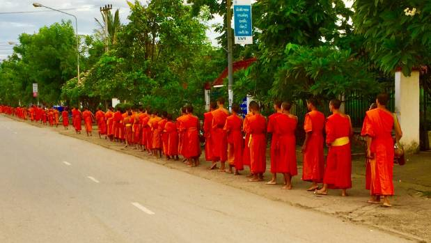 The monks form a long orange ribbon unravelling at dawn in Luang Prabang.