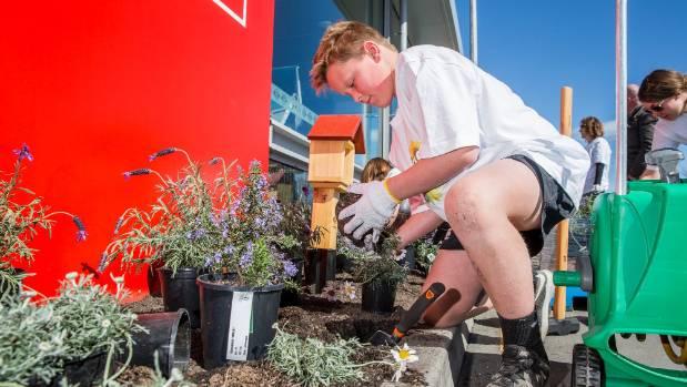 Hunter Shore helping replant the New World garden.