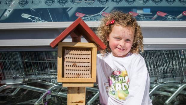 Claudia Shore with a non-stinging leafcutter beehive outside New World in Blenheim.