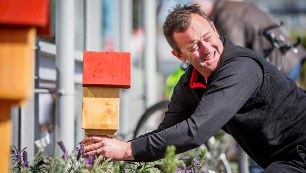 New World Blenheim owner Ashley Shore installs a beehive in the store's garden.