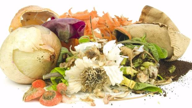 More than half of the food throw away is preventable.