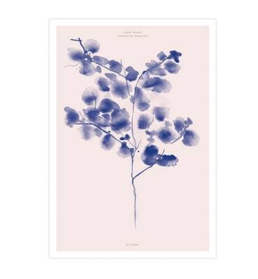 Combining the botanical drawing trend with the colour of 'now', it's the Cotton Plant Pink print by Pop Motif. $59.