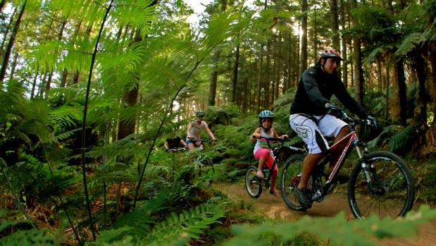 More than 130 kilometres of mountain bike trails twist and turn through the Whakarewarewa Redwood Forest.
