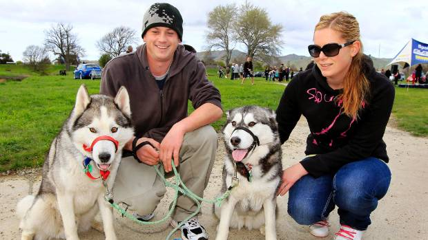 Take your dogs to the Taylor River on Sunday for Dogs Day Out.