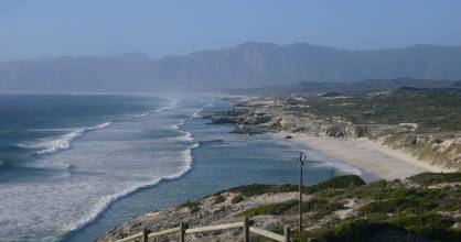 Thousands gather to welcome the return of the southern right whales in Hermanus each spring.
