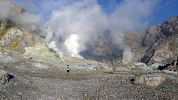 Whakaari/White Island attracts volcanologists and sightseers from around the world, with more than 20,000 visitors a year.