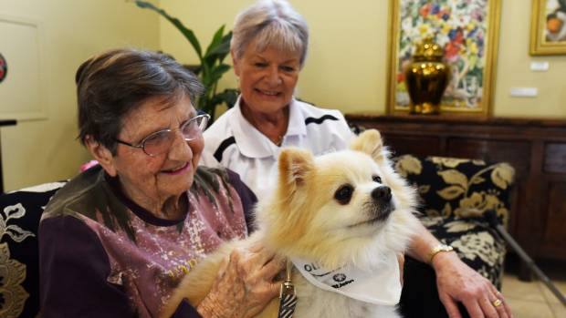 Dementia Auckland volunteer Carole Wheeler, right, Evelyn Page resident Hazel, and Max.