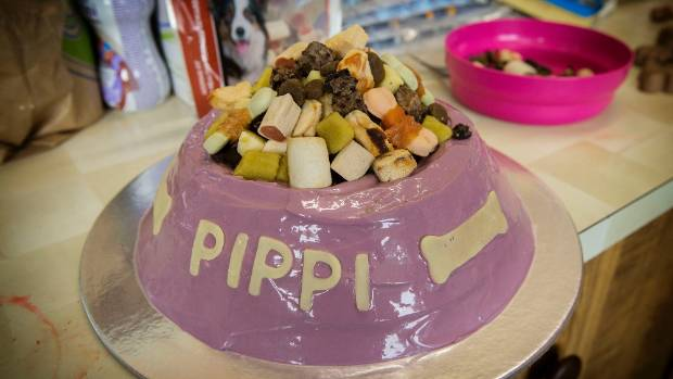 Birthday cakes for pooches prove a hit Stuffconz