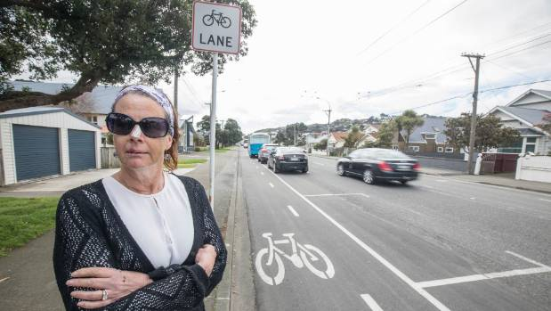 Linda Gibson is worried a child could die after she collided with a cyclist on the controversial Island Bay cycleway.
