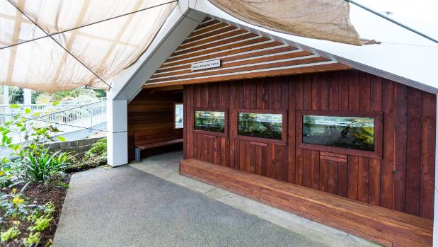 Fish swim in the walls of the Bublitz Education Centre as four tanks are displayed on the wooden exterior walls.
