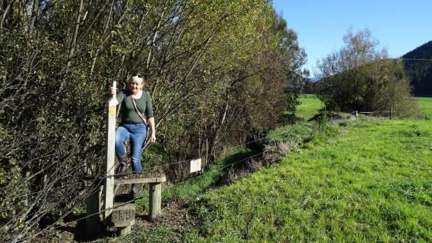NZ Walking Access Commission regional field advisor Penny Wardle on Daltons Track.