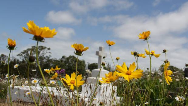 More families opting to take control of the funeral process stuff waikumete cemetery open day will be held on november 12 when its wildflowers are in solutioingenieria Image collections
