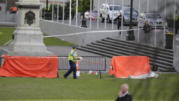Man sets himself on fire outside NZ parliament in Wellington